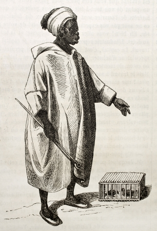 black ancestry: Birds merchant old illustration. By unidentified author, published on Magasin Pittoresque, Paris, 1843 Editorial