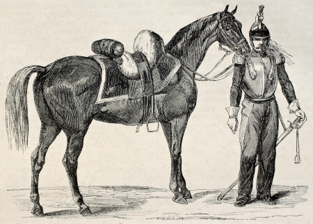 saddle: Half-blood cavalry horse old illustration. By unidentified author, published on Magasin Pittoresque, Paris, 1845 Editorial