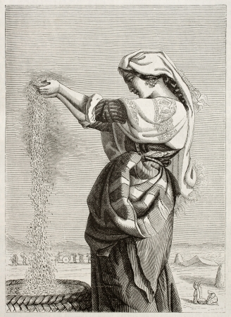 winnowing: Italian woman wind winnowing in Roman countryside. Created by Lehmann, published on Magasin Pittoresque, Paris, 1845 Editorial