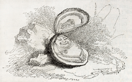 Old illustration of an oyster. By unidentified author, published on Magasin Pittoresque, Paris, 1850