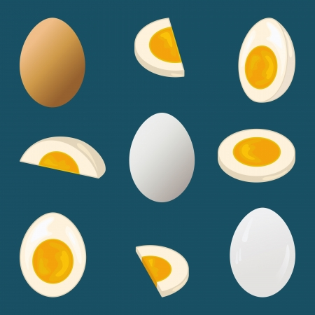 boiled: Hard-boiled egg, entire and sliced, nine views Illustration
