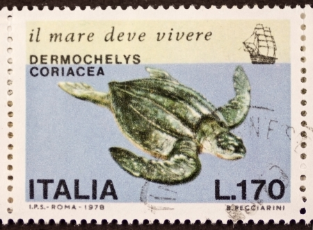 ITALY � CIRCA 1978: a stamp printed in Italy shows image of Leatherback sea turtle (Dermochelys coriacea) the largest living turtle. Italy, circa 1978