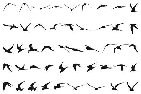 Cuarenta y siete pequeñas golondrinas volando siluetas negras