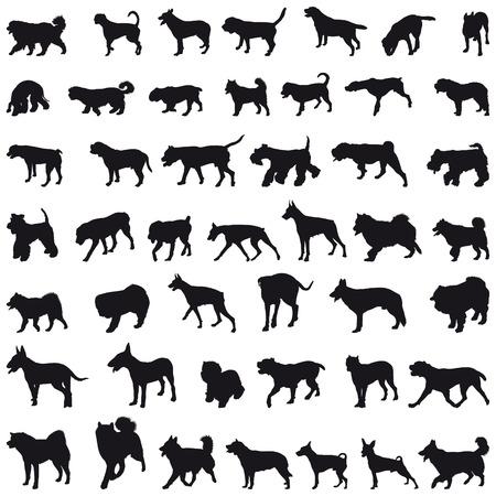 perro boxer: Varias razas muchos perros siluetas negras