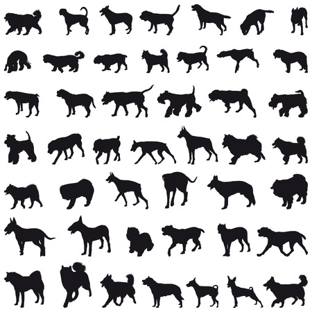 Various breeds many dogs black silhouettes Vector