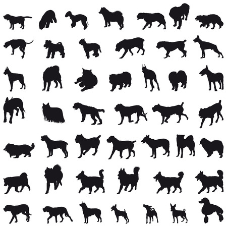 pincher: Various breeds many dogs black silhouettes