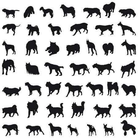 doberman: Verschiedener Rassen viele Hunde schwarzen Silhouetten