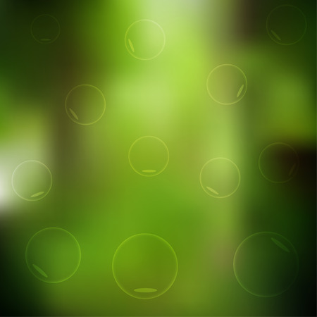 shiny day: Green forest blur background.