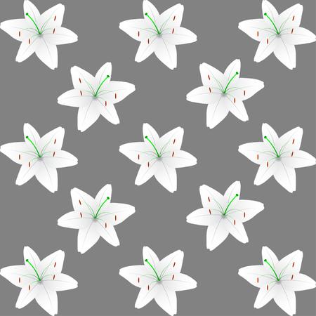 flor de lis: Fondo blanco patr�n de lirio. Vector patr�n de lirio de fondo.