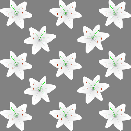 lily leaf: White lily pattern background. Vector lily pattern background. Illustration