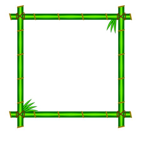 green bamboo: Green bamboo frame.