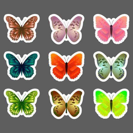 morpho: Set of vector butterflies stickers.