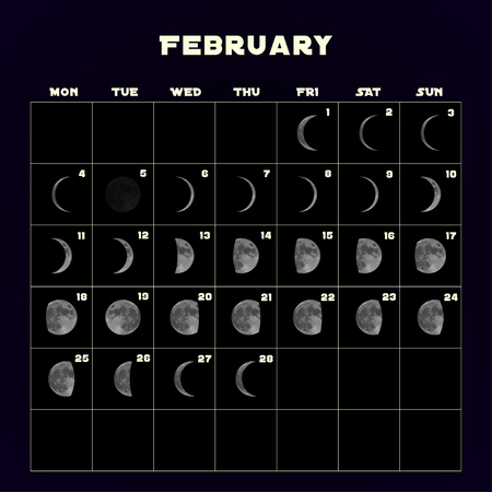 Moon phases calendar for 2019 with realistic moon. February. Vector EPS 10