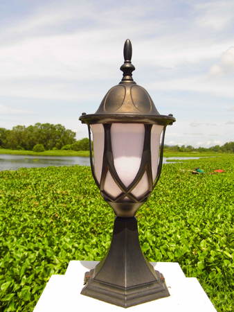 lamplight: Lamp with nature