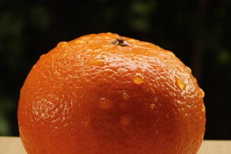 navel: Close-up of Fresh Navel orange with drop Stock Photo