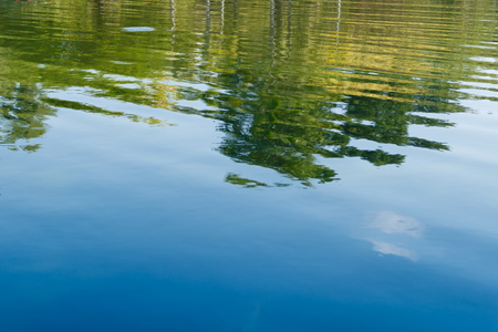 vibrant color: Green tree and blue sky vibrant color reflection in the water Stock Photo