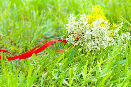 botanics: summer bouquet of meadow flowers in the green grass with red ribbon