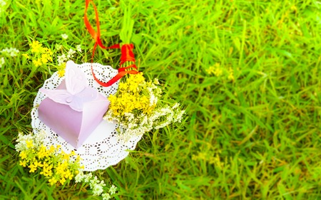 botanics: purple gift with a butterfly and red ribbon on a background of green grass with meadow flowers