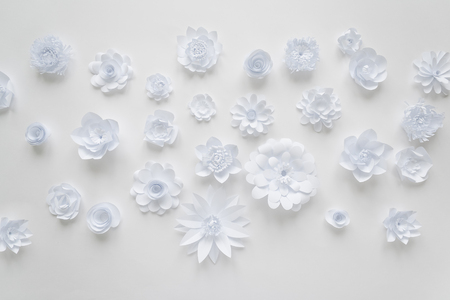 White paper flowers on white background. Floral background cut from paper Banque d'images - 117270577