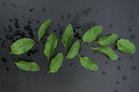 Above view of fresh spinach leaves on a black wooden background