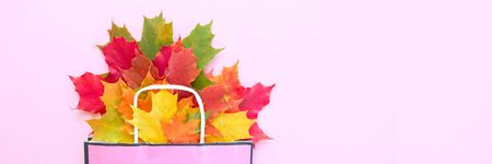 Autumn leaves in bag on pink background. Season composition for mock ups, template with text place. Stok Fotoğraf