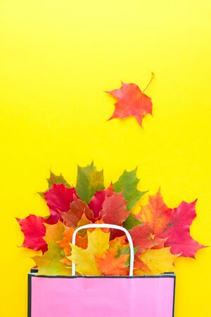 Autumn leaves in bag on yellow background. Season composition for mock ups, template with text place.