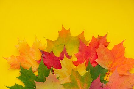Leaves of paper fall red, orange, yellow leaf fall.