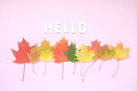 Leaves of paper fall red, orange, yellow leaf fall. Autumn concept