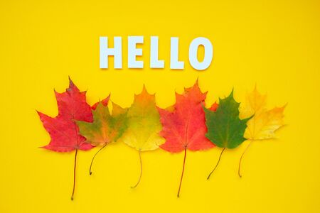 Lettering hello with autumn leaves red, orange, yellow. Yellow background. Stok Fotoğraf