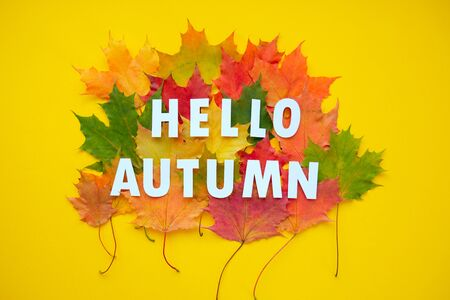 Lettering hello autumn with autumn leaves red, orange, yellow. Yellow background. Letters are cut out of paper