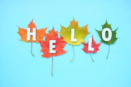 Lettering hello with autumn leaves red, orange, yellow. Blue background.