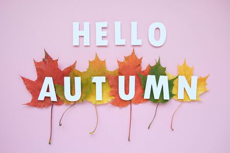 Lettering hello autumn with autumn leaves red, orange, yellow. Pink background. Letters are cut out of paper Stok Fotoğraf