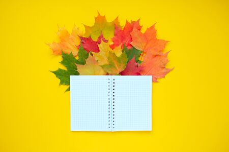 school notebook with autumn leaves red, orange, yellow. Yellow background.