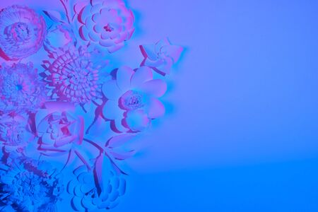 White paper flowers made of white paper on a white background illuminated by neon light. Trendy, modern Stok Fotoğraf