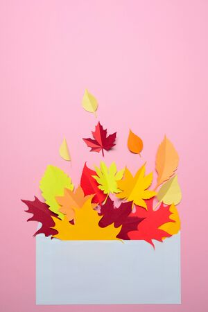 Autumn leaves in an envelope on a pink background. Season composition for mock ups, template with text place. 스톡 콘텐츠