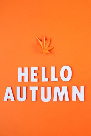 Orange maple leaf cut from paper on a bold orange background. Fall concept.