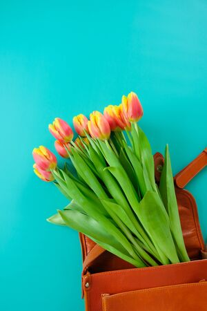 Fresh tulips in a womens bag on a mint background. Concept of international womens day, mothers day, Easter