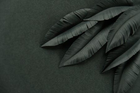 The feathers of a bird made of black paper on black background. Black on black. Dark art 스톡 콘텐츠