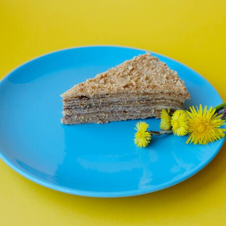 homemade honey cake with dandelions on yellow background, a hobby for self-isolation