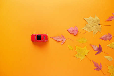 toy red car lucky autumn leaf. Autumn concept