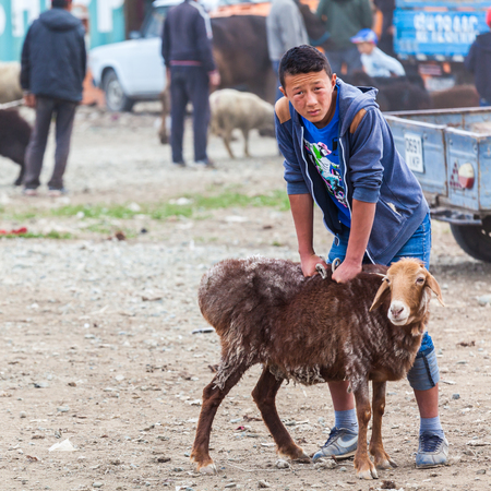 KARAKOL, KYRGYZSTAN - CIRCA JUNE 2017: Weekly Sunday animal market in Karakol city near the eastern tip of Lake Issyk-Kul in Kyrgyzstan circa June 2017 in Karakol.