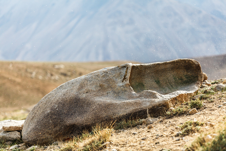 View of thousands of small flies on Lake Bulunkul in Tajikistan