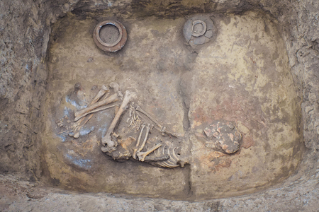Archaeological excavations. research on human burial, skeleton, skull, ritual pot Фото со стока