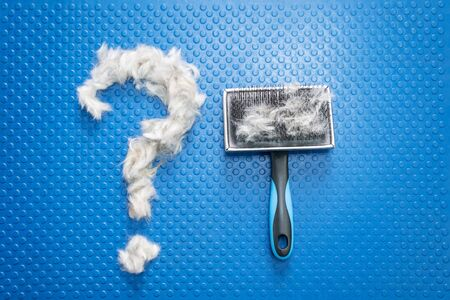 The question mark made from dog fur, with grooming brush, on bright blue background. Concept of dog hair care and treatment.