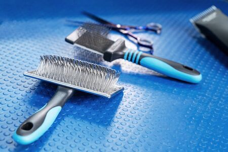 Close up grooming brush and special professional comb for dog and cat grooming. Bright blue rubber mat background. Concept of pets hair care and treatment, copy space.