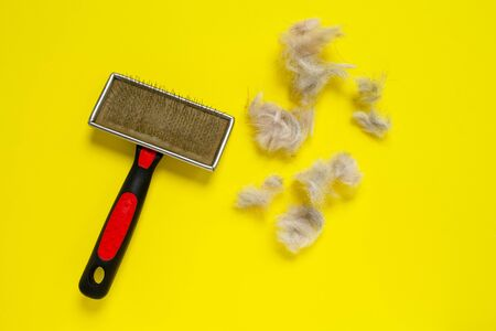 Grooming brush, or professional comb for dog, with lots of shreds of animal fur on bright yellow background. Zdjęcie Seryjne