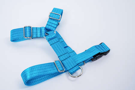 Blue tissue dog harness with silver metal fittings isolated on white background. For a safe trip and walk with your pet. Pet Supplies and Walking Gear Collection