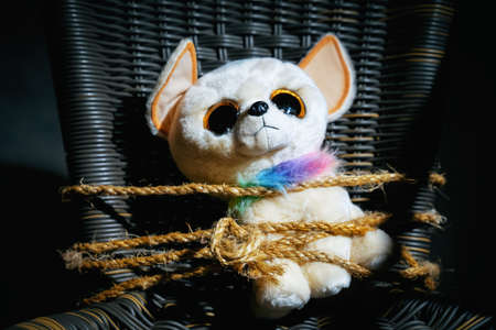 soft toy of a sad dog tied with a body rope to a chair in a dark room. Parody for the abduction of children. Hostage taking