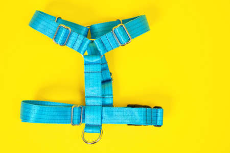 Blue tissue dog harness with silver metal fittings isolated on yellow background. For a safe trip and walk with your pet. Pet Supplies and Walking Gear Collection