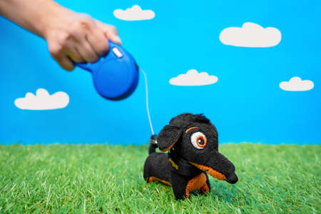 Artificial imitation of walking with dog prosecc. The human hand holding reel with leash for pet soft toy dachshund on green grass lawn, blue sky with white clouds background. Stock Photo